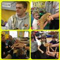 St Palladius experience 'hands on' learning with a visit from the Animal Man – 1st March 2017