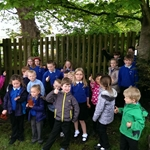 Acorns planted by Pupils - 12th May 2014